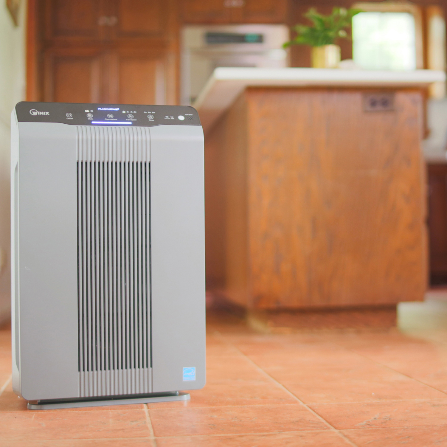 Winix 5300 2 Air Cleaner With Plasmawave 194 174 Technology
