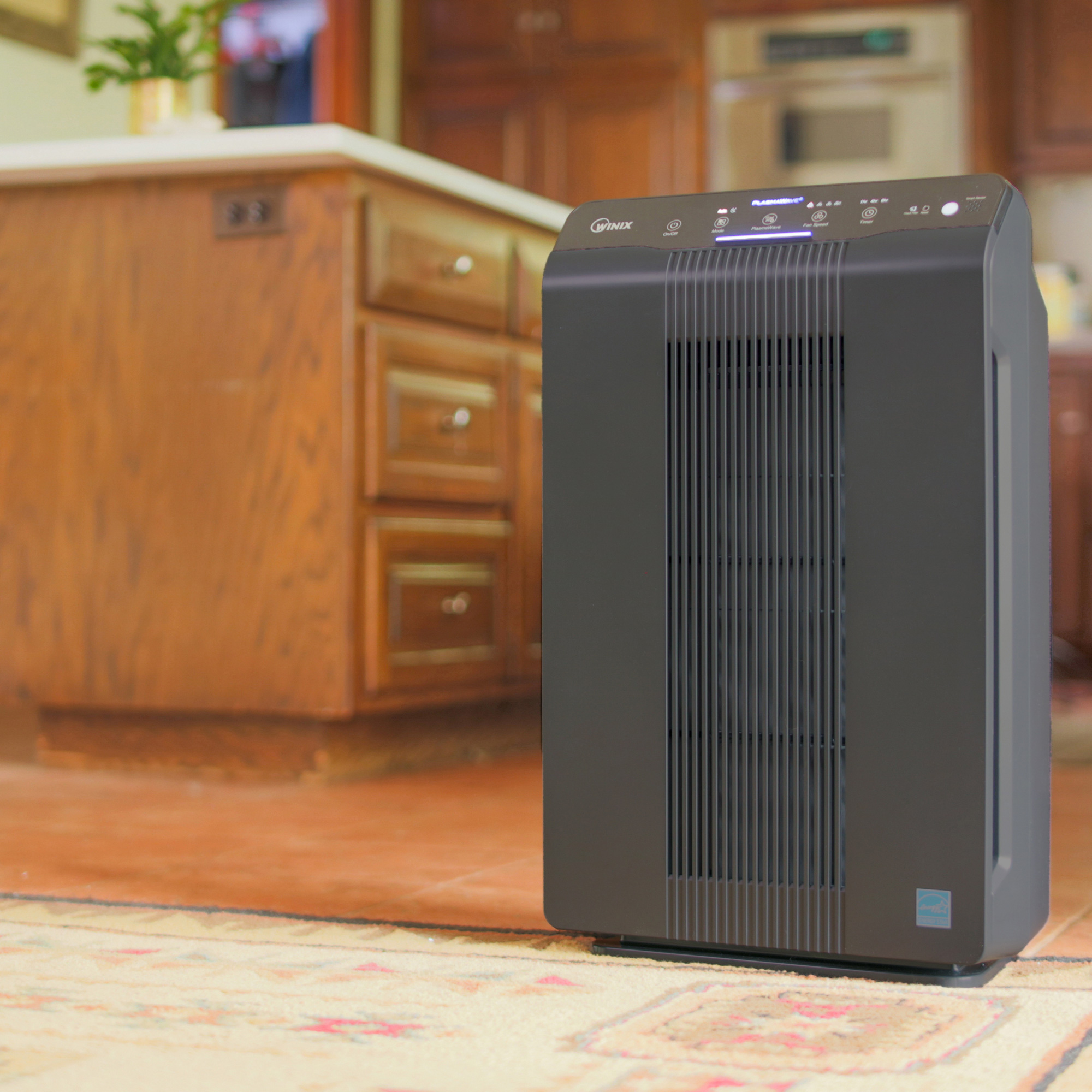Winix 5500 2 Air Purifier With Plasmawave 194 174 Technology