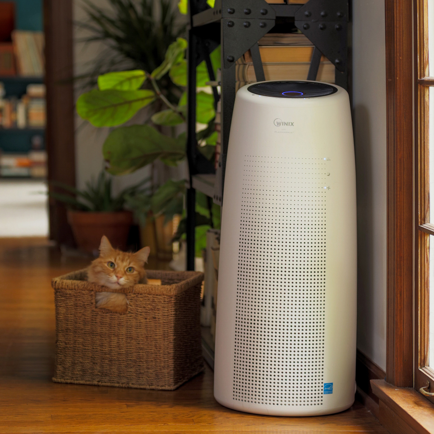 Winix Nk105 Wi Fi Tower Air Purifier Winix America Inc