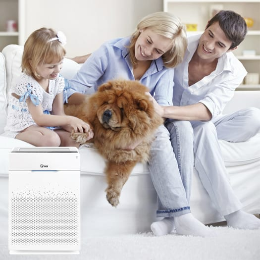 Winix Ultimate Pet HR900 Air Purifier