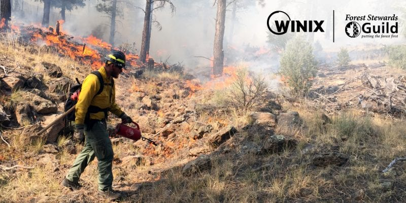 Winix Partnership with Forest Stewards Guild